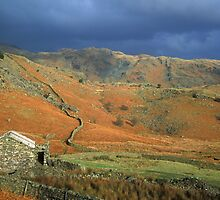 Coniston Fells Lake District by Nick Jenkins