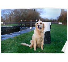 Megan at Clomoney lock, River Barrow, County Carlow, Ireland Poster