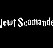 Newt Scamander (White) - FANTASTIC BEASTS AND WHERE TO FIND THEM by enduratrum