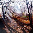 Misty days and sun rays by Paula Oakley