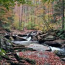 Autumn Drizzle On Kitchen Creek by Gene Walls