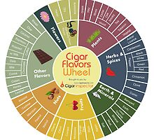 Cigar Flavors Wheel poster by CigarInspector