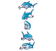 Prom Shark (Vertical)  Photographic Print