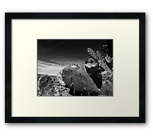©MS The Wach-Ant IA Monochrome Framed Print