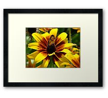 """""""Butterfly and Flower"""" by Carter L. Shepard Framed Print"""