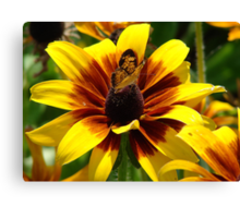 """Butterfly and Flower"" by Carter L. Shepard Canvas Print"