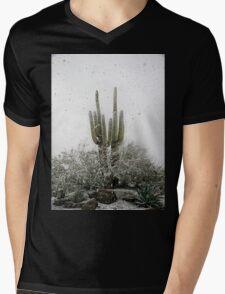 Arizona Snowstorm Mens V-Neck T-Shirt