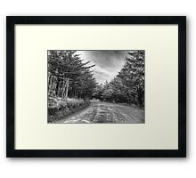 ©MS On The Road IA Monochromatic Framed Print