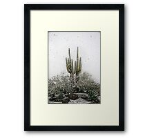 Arizona Snowstorm Framed Print