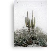 Arizona Snowstorm Metal Print