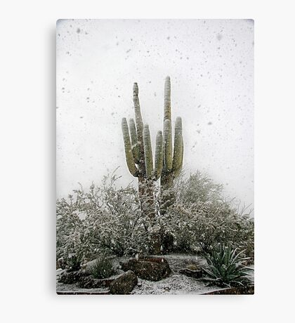 Arizona Snowstorm Canvas Print