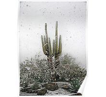 Arizona Snowstorm Poster