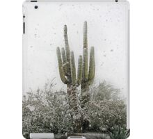 Arizona Snowstorm iPad Case/Skin