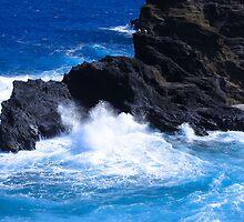 """""""Hawaii Ocean"""" by Carter L. Shepard by echoesofheaven"""