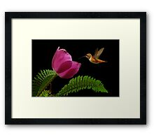 ATTENTION TO DETAIL~ Framed Print