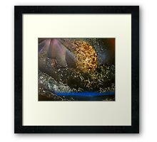 Spray Paint Art by DCP Framed Print