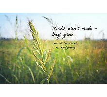 Words Grow Anne Shirley Photographic Print