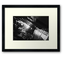 Sun Lit Footpath  Framed Print