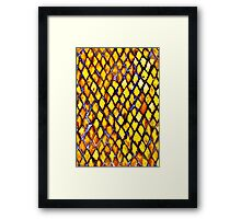 Scales of Gold  Framed Print