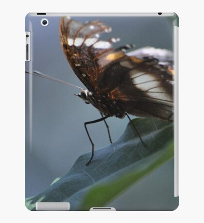 Flutter iPad Case/Skin