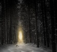 Into The Light by Pete5