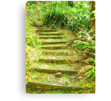 """Manoa Path"" by Carter L. Shepard Canvas Print"