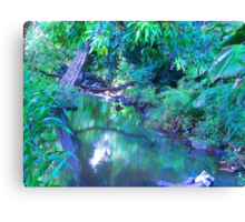 """Manoa Valley Creek"" by Carter L. Shepard Canvas Print"