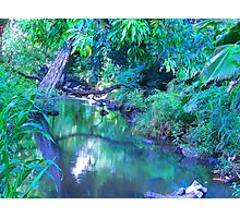 """Manoa Valley Creek"" by Carter L. Shepard Photographic Print"