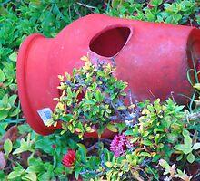 """""""Hawaii Flower Pot"""" by Carter L. Shepard by echoesofheaven"""