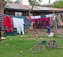 Wash Day Yard by phil decocco