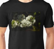 Beach Plum Blossoms - Prunus maritima Unisex T-Shirt