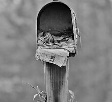 Forgotten Mail by Cynthia48