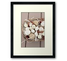 Eggs and feathers Framed Print