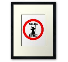 You Shall Not Pass - Gandalf Framed Print