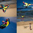 Kites Are Cool! - Beachcomber Series by reflector