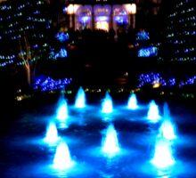 Lewis Ginter Botanical Gardens-Festival of Lights      ^ Sticker