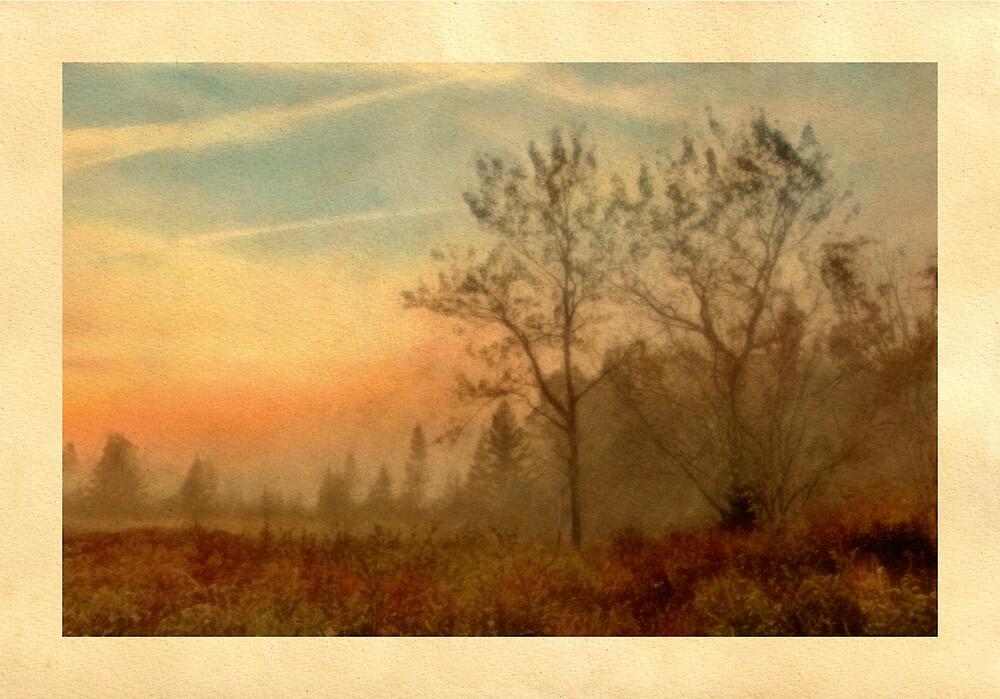 Morningmist, Newcastle, Maine by Dave  Higgins
