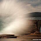 Splashh by Aleksandar Topalovic