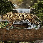 Jaguar Waterfall by Walter Colvin