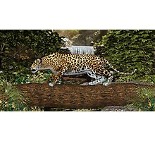 Jaguar Waterfall Photographic Print