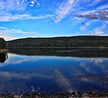 Late Afternoon By Grassy Lake Reservoir  by Brenton Cooper