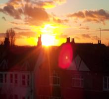 Suburb Sunset Sticker