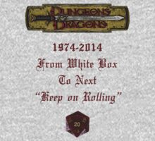 """Dungeons & Dragons """"Keep On Rolling"""" by Marjuned"""