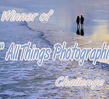 Banner for All Things Photographic by ©Dawne M. Dunton