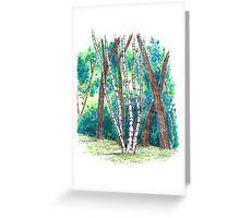 Birch in the Back, 2013 Greeting Card
