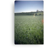 Holga Field 2 Canvas Print