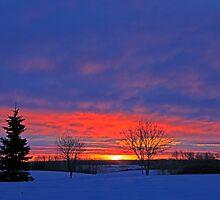 Winter Sunrise on the Prairies by rdf254