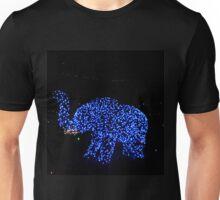 FESTIVAL of LIGHTS - Richmond, VA Unisex T-Shirt