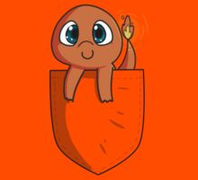 Pocket Monsters: Charmander in my Pocket V2 by Otherbuttons
