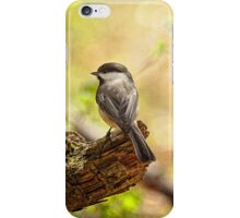 Thinking of Spring iPhone Case/Skin